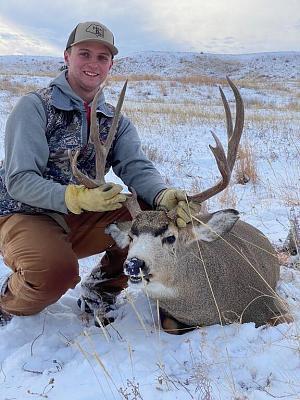 Click image for larger version.  Name:Deer 2020.jpg Views:72 Size:88.6 KB ID:52316