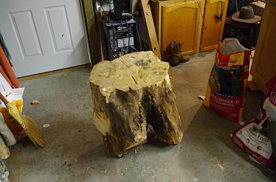 Click image for larger version.  Name:stump.jpg Views:155 Size:365.2 KB ID:33871