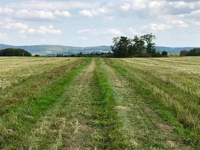 Click image for larger version.  Name:Higgins Farm runway.jpg Views:115 Size:81.1 KB ID:33121