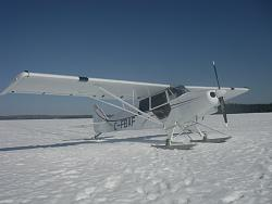 Click image for larger version.  Name:2009_smith_cub_5.jpg Views:95 Size:60.2 KB ID:15200