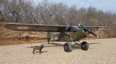 Click image for larger version.  Name:green cub.jpg Views:126 Size:111.6 KB ID:40044