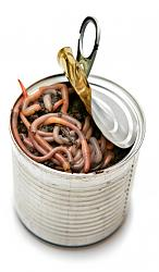 Click image for larger version.  Name:can-of-worms.jpg Views:81 Size:72.6 KB ID:7676